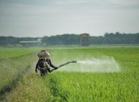 Water Quality Violations: EU has Greece under pressure