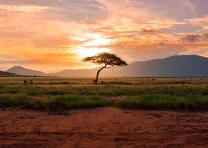 Climate Gaps for South Africa