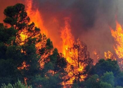 How Wildfires Affect Water Quality